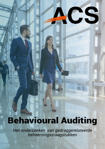Artikel Behavioural Auditing